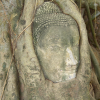 Thumbnail image for Video: Exploring Wat Mahathat in Ayutthaya, Thailand