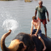 Thumbnail image for Bathing With Elephants in Chitwan National Park, Nepal