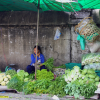 Thumbnail image for Photo Essay: Markets of Thailand