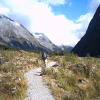 Thumbnail image for A Dream Come True: Trekking the Milford Track in New Zealand