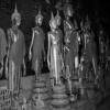 Thumbnail image for Photo of the week: Buddha Statue Collection at Wat Xieng Thong in Luang Prabang, Laos