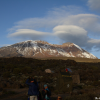 Thumbnail image for Climbing Mount Kilimanjaro – Trekking to Shira Plateau