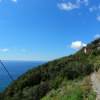 Thumbnail image for Hiking from Vernazza to Corniglia in Cinque Terre, Italy