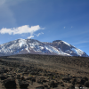 Thumbnail image for Photo of the week: Snow Capped Mount Kilimanjaro from Shira Plateau
