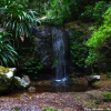 Thumbnail image for Photo of the week: Rain Forest Waterfall in Lamington National Park, Australia