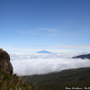Thumbnail image for Mount Meru above the clouds on Mount Kilimanjaro, Tanzania
