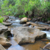 Thumbnail image for Logan River Rapids at Flanagan Reserve, Australia