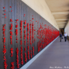 Thumbnail image for The Hall of Memory at the Australian War Memorial in Canberra