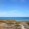 Thumbnail image for Panorama: Point Lowly, South Australia