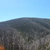 Thumbnail image for Mountain Panorama in Falls Creek, Australia