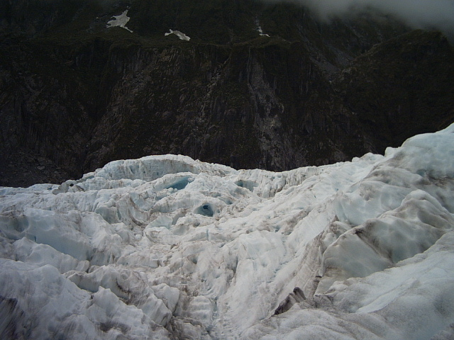 On fox glacier new zealand