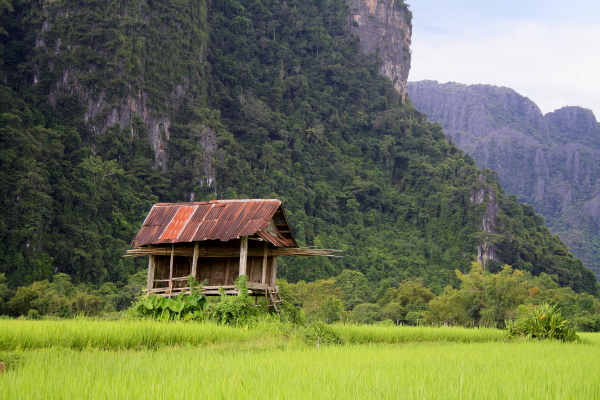 A shed in a rice field in Vang Vieng, Laos