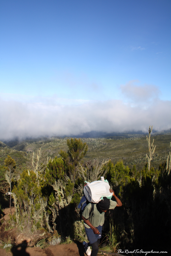 A porter on Mount Kilimanjaro near Machame Hut, Tanzania