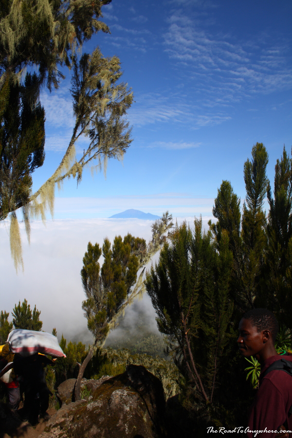Waiting for porters to pass on Mount Kilimanjaro, Tanzania