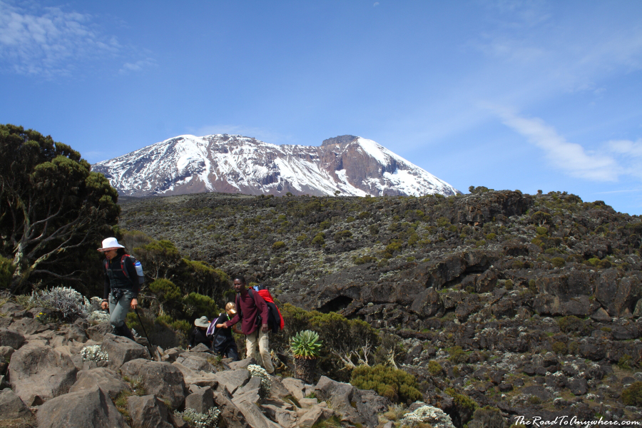 Kibo Peak from Shira Plateau on Mount Kilimanjaro, Tanzania