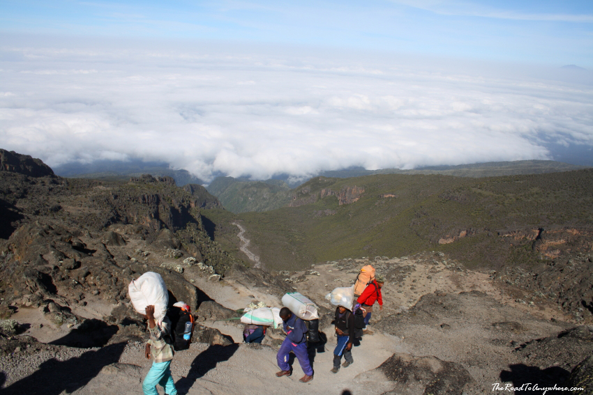 View of Barranco Valley from the top of the Great Barranco Wall on Mount Kilimanjaro, Tanzania