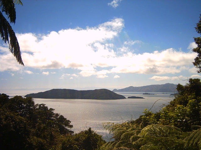 Views of Queen Charlotte Sound on the Queen Charlotte Track, New Zealand