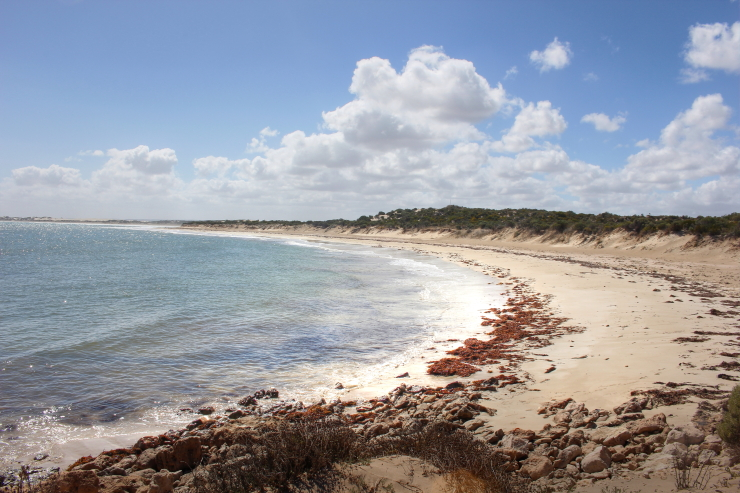 Beaches, Bays and Sea Lions on the Eyre Peninsula, South Australia