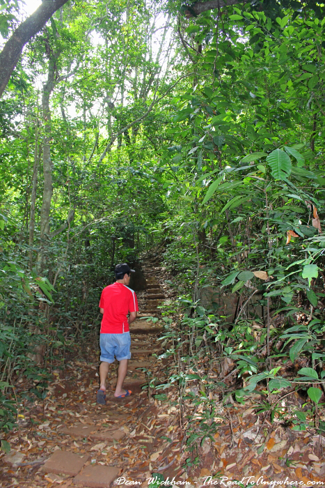 Hiking through the jungle in Cat Ba National Park, Vietnam
