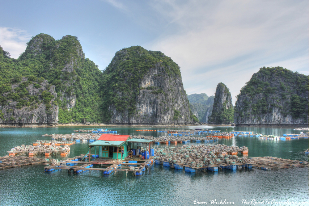 Floating fish farm in Han La Bay, Vietnam