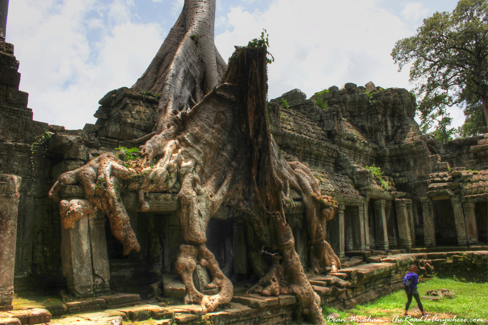 Tree covered ruins in Preah Khan in Angkor, Cambodia