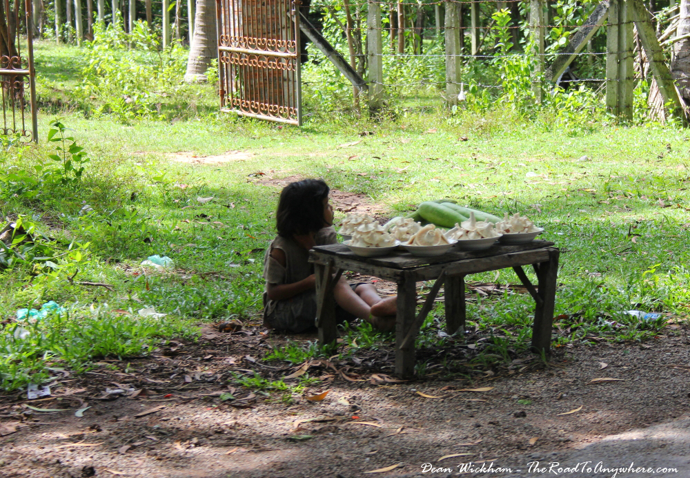 Little girl selling vegetables on the side of the road in Cambodia