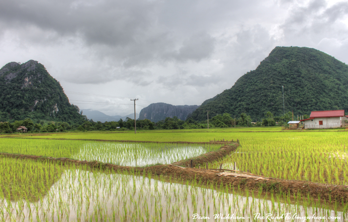 House and rice fields in Vang Vieng, Laos