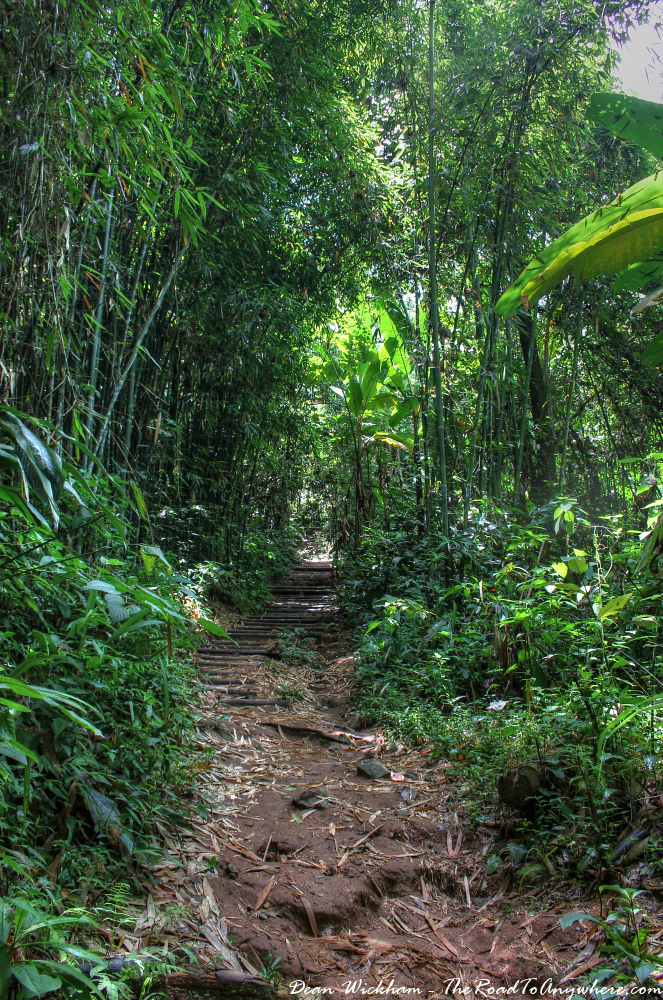 Rainforest trail to Khun Kon Waterfall in Northern Thailand