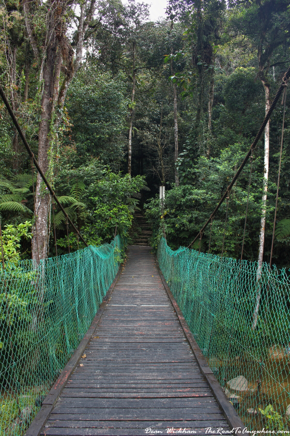 Wooden bridge in the Cameron Highlands, Malaysia