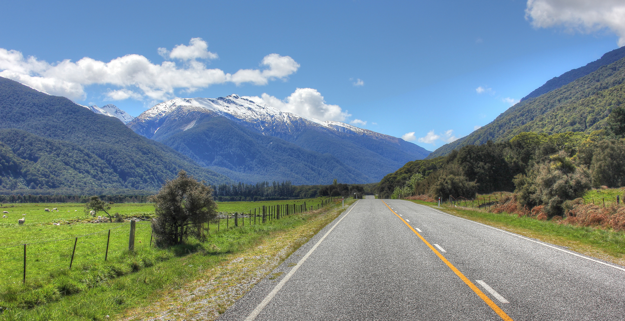 Driving to Haast Pass, New Zealand